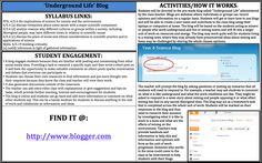 Underground Life Blog! Allow students in your class access into a collaborative online blog. Students can add and comment through the blog medium throughout the whole unit of work. Everyone can voice an opinion and see class members ideas and knowledge.  Find it at: http://www.blogger.com