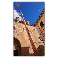 Todavía podemos ver las pruebas de una de las fiestas más típicas de Mallorca en Pollença. by sa_fita_backpackers