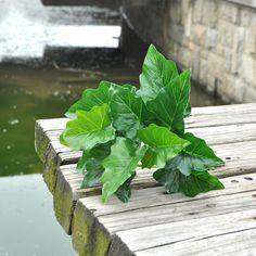 12 leaves greenery plant Artificial silk green leaf fake hanging plants for house decoration #Affiliate