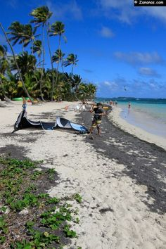 Kitesurfers love the Anse Michel on the east coast of Martinique.
