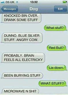 Love dog texts