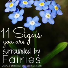 11 Signs You are Surrounded by Fairies  at www.earthenergyhealings.com