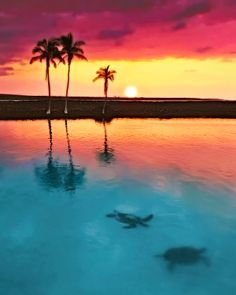 Sunset in Big Island of Hawaii
