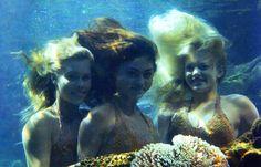 Just Add Water - Mermaids Emma, Rikki, Cleo! H2o Mermaids, Mermaids And Mermen, Rikki H2o, H2o Mermaid Tails, Cariba Heine, No Ordinary Girl, Moon Pool, Water Aesthetic, Phoebe Tonkin