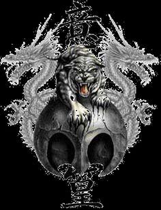 Tiger dragon ... Evan & Kris
