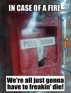 Funny memes � In case of fire