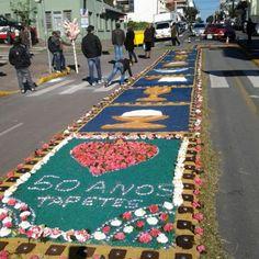 Tapetes Flores Da Cunha