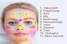 Ha ezeket a pontokat masszírozzuk az arcunkon, akkor elejét vehetjük a szervi megbetegedéseknek - Tudasfaja.com
