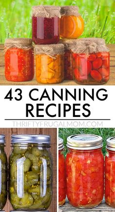 Easy Canning, Canning Tips, Tomato Canning Ideas, Canning Vegetables, Canning Tomatoes, Pickled Tomatoes, Salsa Canning Recipes, Salsa For Canning, Canning Pickles