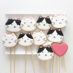 Kitties cookies