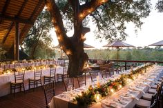 Kyly Zakheim and Ryan Rabin Marry in a Magical Safari Wedding in South Africa Africa Destinations, Amazing Destinations, Travel Destinations, Wedding Locations, Wedding Venues, Wedding Ideas, Wedding Planning, Wedding Decorations, Wedding Inspiration
