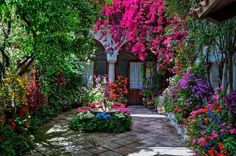 """""""While the library is the greenhouse of head,the garden is home of heart http://t.co/w45WpLwScO"""""""