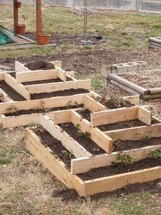 backyard design – Gardening Tips
