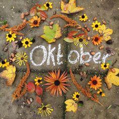 """Marieke Nolsen on Instagram: """"Last week of oktoberrrr ....ik heb nog helemaal niet het idee dat we al bijna in november zitten. De grote bomen om ons heen vertellen dat…"""""""
