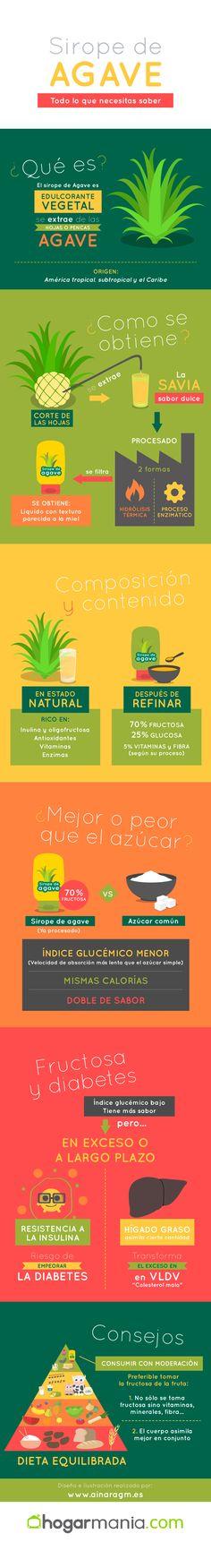 #Infografia realizada para @hogarmania #agave #infografia #consejos via @ainaragm