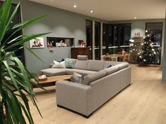 @signatur305 Living Room Green, Sofa, Couch, Malta, My House, Furniture, Colour, Home Decor, Color