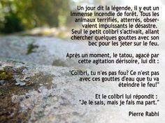 Le colibri - Pierre Rabhi