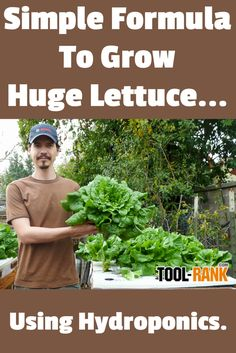 "Hydroponic Gardening Ideas Simple hydroponic nutrient solution calculator lets you grow huge lettuce in almost any container using the ""set and forget"" Kratky Method. Hydroponic Lettuce, Hydroponic Farming, Hydroponic Growing, Hydroponics System, Diy Hydroponics, Backyard Aquaponics, Aquaponics Plants, Permaculture, Hydroponic Nutrient Solution"