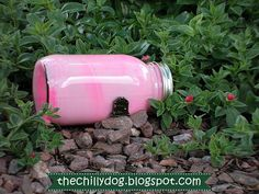 The Chilly Dog: Fairy House - Painted Mason Jar