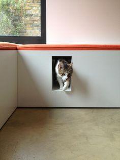 Book Tower House; cat hideaway; Gardenista