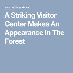 A Striking Visitor Center Makes An Appearance In The Forest