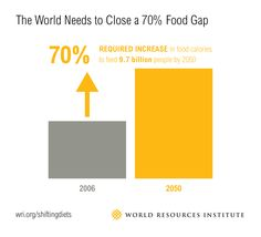 When people think about food and sustainability, they typically focus on how the food is produced—is it locally sourced, pasture-fed or organic? New WRI research shows that the question of *what* is eaten is just as important. Agriculture Industry, Animal Agriculture, World Need, Our World, Agricultural Practices, Food System, Sustainable Food, Spice Things Up, Need To Know