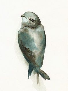 Water color bird: