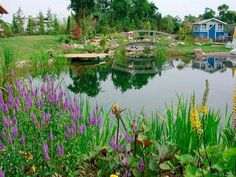 The possibilities for natural pool designs are nearly limitless, from traditional looks to serene settings that closely resemble wild ponds.  - GoodHousekeeping.com