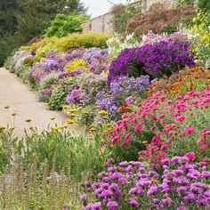 Read these 15 easy gardening tips and hacks so that you can have a garden that is lush with produce. Gardening is fun when you know how to do it right! Hillside Garden, Hillside Landscaping, Sloped Garden, Landscape Design, Garden Design, Cottage Garden Plants, Sun Garden, Shade Garden, Herbaceous Border