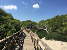 Naturschutzgebiet Muro, Mallorca: Mallorca Geheimtipps: Auf unserem Blog verraten wir Euch unsere Geheimtipps für einen Urlaub auf Mallorca...