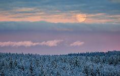 Moonlight Winter Landscape