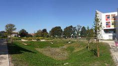 http://www.silva-landscaping.com/equipements-publics/