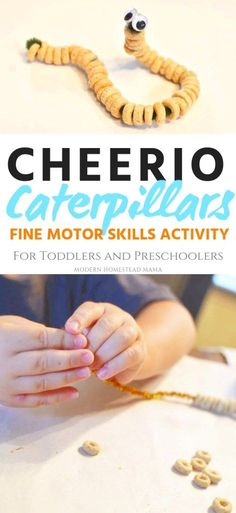 Cheerio Caterpillars (fine motor skills for toddlers and preschoolers) .Cheerio Caterpillars (fine motor skills for toddlers and preschoolers) . - the summer activities Nanny Activities, Fine Motor Activities For Kids, Motor Skills Activities, Toddler Learning Activities, Spring Activities, Infant Activities, Fun Learning, Art Activities For Preschoolers, Educational Crafts For Toddlers