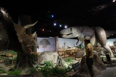 Las Vegas Natural History Museum | 23 Awesome Things To Do With Your Kids In Las Vegas
