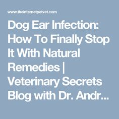 Dog Ear Infection: How To Finally Stop It With Natural Remedies | Veterinary Secrets Blog with Dr. Andrew Jones, DVM