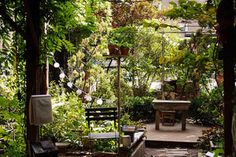 PLACES OF PAUSE IN A CITY THAT NEVER SLEEPS: NYC'S HIDDEN MEDITATION SPOTS