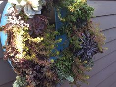 How to Create Vertical Succulent Box With Vintage Letter