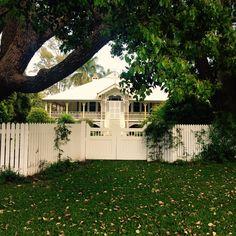 Queenslander colonial home ❤️ Australian Architecture, Australian Homes, House Wrap Around Porch, Queenslander, Traditional House, Home Collections, Old Houses, Wraparound Porches, Colonial