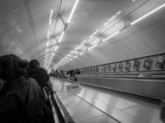 Tube, août 2014
