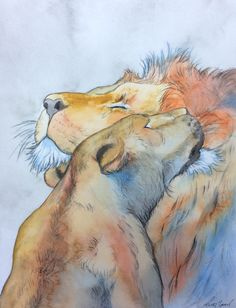 Sara Noad - Wildlife Paintings by BCSaraArt Lion Love, Wildlife Paintings, Mixed Feelings, Lions, Original Paintings, My Arts, The Originals, Experiment, Creative