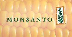 Sign to Stop Monsanto's Dream Bill that was just in the Senate! via @foodandwater http://d.shpg.org/210362834t Stop Monsanto's Dream Bill in the Senate - It's Our Right to Know What's In Our Food