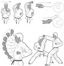 The Basics Of Judo – Martial Arts Techniques Self Defense Martial Arts, Kung Fu Martial Arts, Martial Arts Workout, Martial Arts Training, Boxing Workout, Kata Shotokan, Shotokan Karate, Martial Arts Styles, Martial Arts Techniques