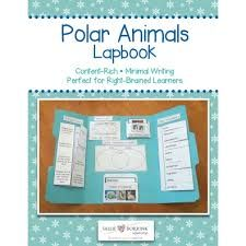 Image result for whales lapbook
