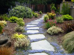 When water hits a solid slab of concrete, it puddles and can not be resued. A staggered flagstone walkway however, allows water to return to the earth and benefit the adjacent landscape.