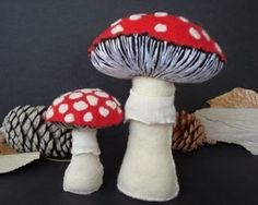 mushrooms by nada