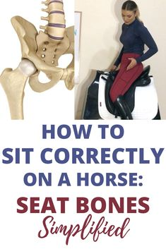 We all dream of having the perfect seat connection with our horses. So how do yo… - Best Equitation Horse Horseback Riding Tips, Horse Riding Tips, Horse Tips, Riding Gear, Riding Clothes, Horse Training, Training Tips, Riding Lessons, English Riding
