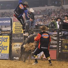 PBR bullfighter, Jesse Byrne gets tossed.... And this is what I want to do with my life :)