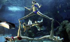 Υποβρύχιο μπαλέτο