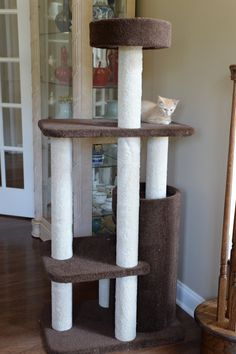 Buy Cat Furniture Lotus Tree Tower Condo Wood Modern Scratch Pad Play Jump Sleep Nap at online store Modern Cat Furniture, Pet Furniture, Cat Activity Centre, Cat Tree Designs, Cat Enclosure, Cat Condo, Buy A Cat, Carpet Design, Dog Bed
