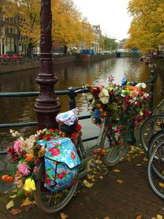 Holland - decorated bicycle in Amsterdam. Brick street, lamp post, and a river.